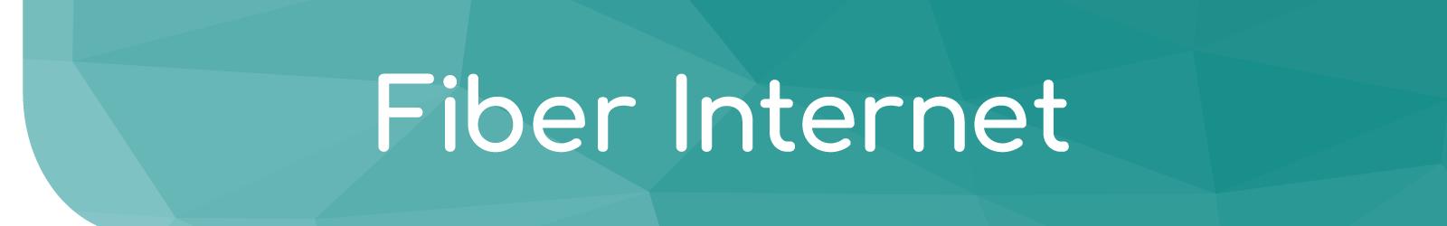 Fiber Internet - Electronic Communication Services